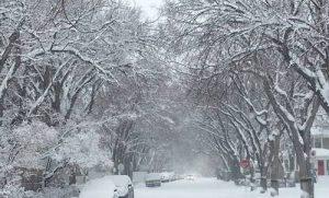 coldest city in canada regina