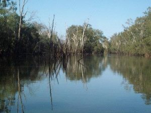 longest river in australia warrego river